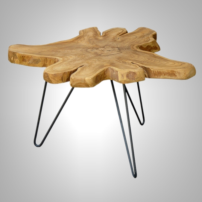 COFFEE TABLE ORGANIC T5cm WITH-IRON-LEG